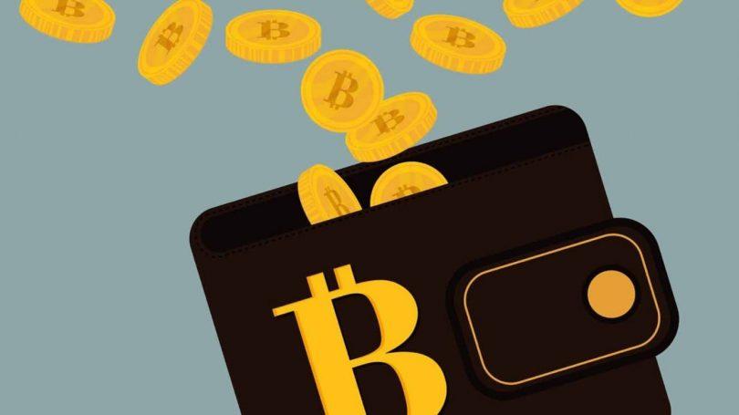 Bitcoin-Wallet-en-iyi-yedi
