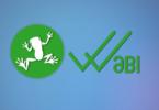 WaBi-nedir-temel-rehber