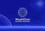 Waykichain-Nedir-temel-rehber-coinbilgi